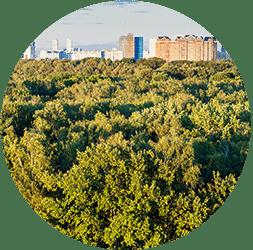 Chantier 5 : La forêt périurbaine